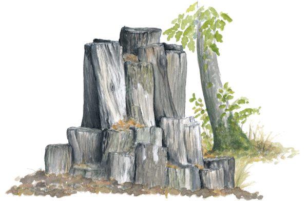 Målad bild på ekoxe-kompost